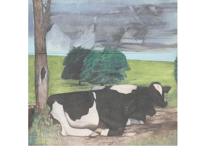 Richard Wilt | Cows Laying Down with Trees