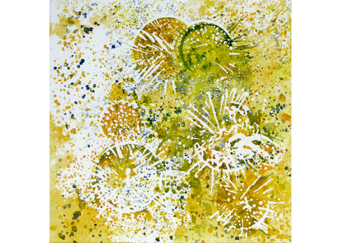"Cathy Barry - Buttonbush Summer | Watercolor on Paper | 9.75"" x 9.75"" 