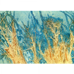 "Lonora Flores - Fields 4 | Mixed Media | 12"" x 24"" 