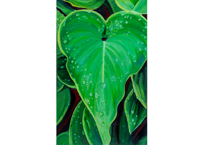"Lori Sten - Wet Hosta | Acrylic on Stretched Canvas | 30"" x 48"" 