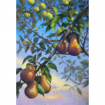 "Jill Wagner - Prussian Pears | Pastel | 36"" x 24"" 